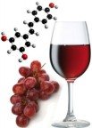 what-is-resveratrol