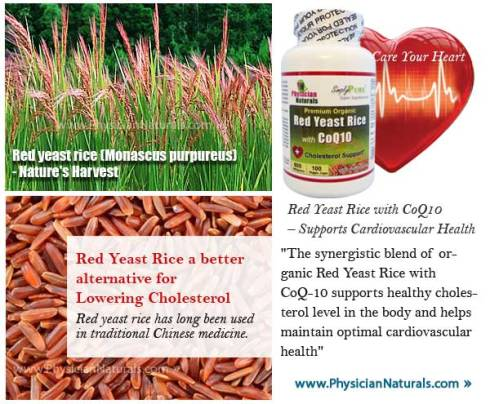 Red Yeast Rice Supplements