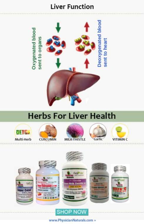 Natural Herbal Remedies Supplements For Liver Health